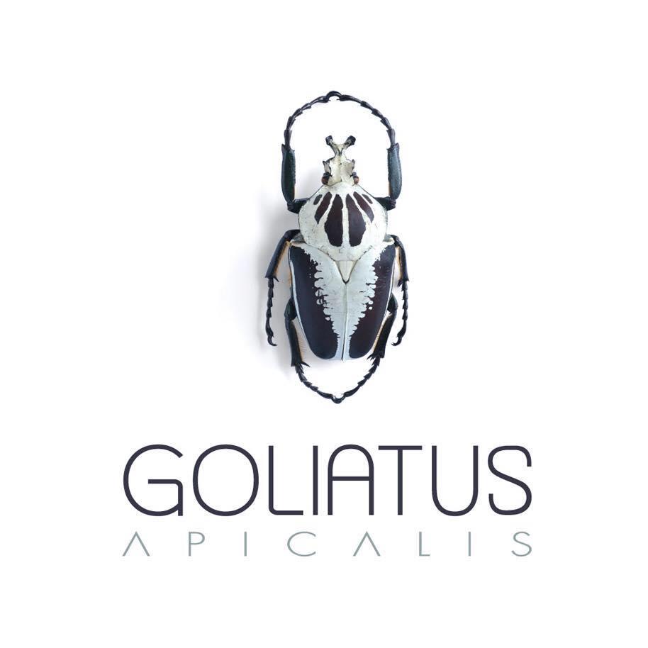 logo Goliatus
